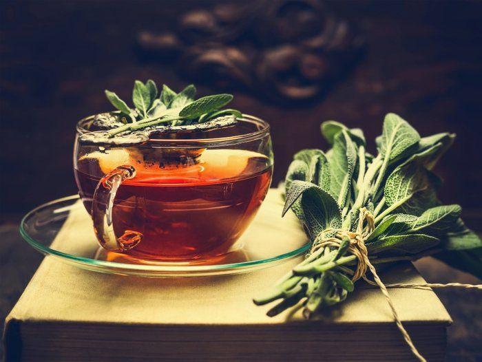 Möcüzəvi Adaçayı bitkisi -   - Çayının 25 FAYDASI