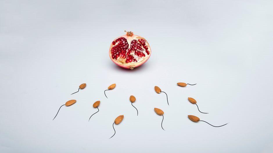 Spermatozoidin hamiləlikdə daha bir rolu kəşf edildi  –  Düşüklərə səbəb olur