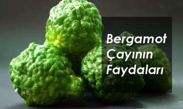Stressi aradan qaldıran müalicəvi bitki -  Berqamot çayının faydaları