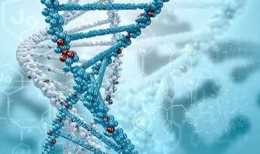 - Artıq yeni DNK analizi ilə bunu müəyyən edəcək Ömrümüzə nə qədər qalıb?