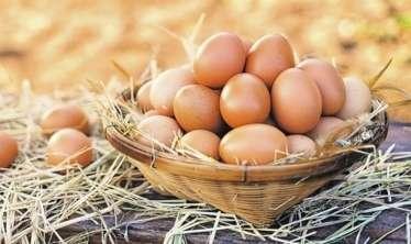 Yumurtanın faydaları -  Mütəxəssislər açıqlayır