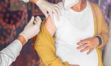 Hamilələr vaksin olunsun, ya olunmasın? -  Tanınmış ginekoloqlardan vacib AÇIQLAMA